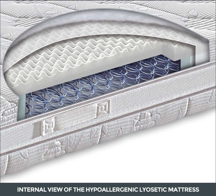 Internal view of the Hypoallergenic Lyosetic mattress