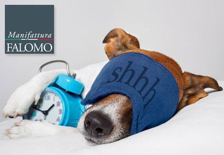 Do Animals Sleep Like Humans?