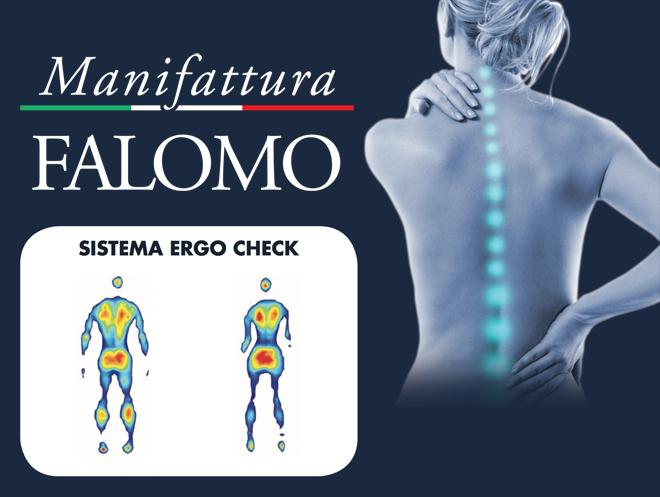 Ergo check system