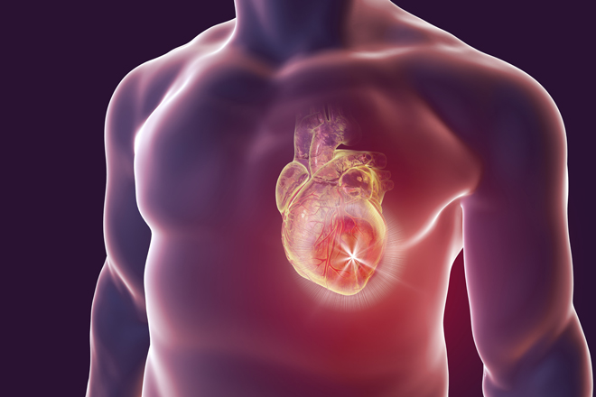 Did you know that the quality of your rest also affects the health conditions of your heart?